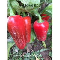 APS Mix Mild And Medium Annuum Pepper