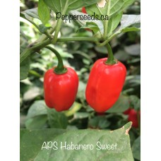 APS Habanero Sweet Pepper