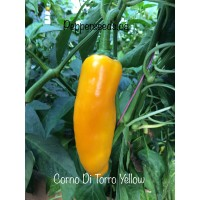 Corno Di Torro Yellow Pepper Seeds