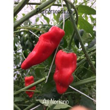 Aji Norteno Pepper