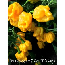 Bhut Jolokia x 7-Pot BBG Huge Yellow Pepper Seeds