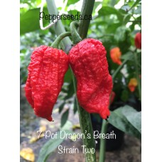 7-Pot Dragon's Breath Strain Two Pepper Seeds