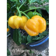 Aji Margaritino Yellow Pepper Seeds