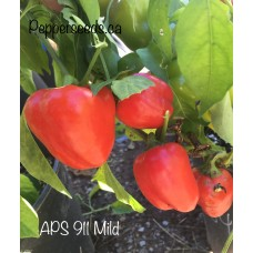 APS 911 Mild Pepper Seeds