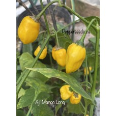 Aji Mango Long Pepper Seeds
