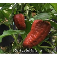 Bhut Jolokia Rust Pepper