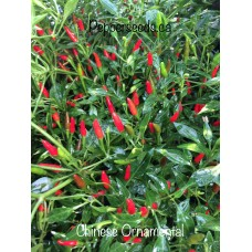Chinese Ornamental Pepper Seeds