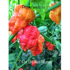 7-Pot Big Red Mama Pepper Seeds