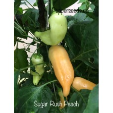Sugar Rush Peach Pepper Seeds