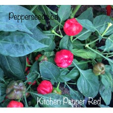 Kitchen Pepper Red