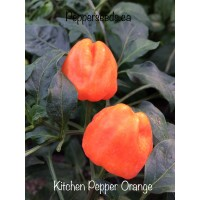 Kitchen Pepper Orange