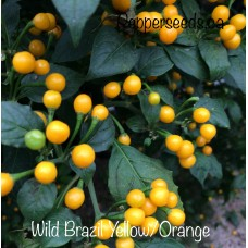 Wild Brazil Yellow/Orange