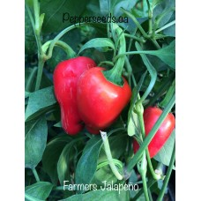 Farmer Jalapeno Pepper Seeds