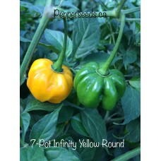 7-Pot Infinity Yellow Round Pepper
