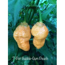 7-Pot Bubble-Gum Peach