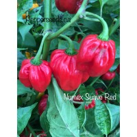 Numex Suave Red Pepper Seeds