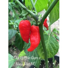 7-Pot Bubble-Gum x Naga Red NC Pepper Seeds