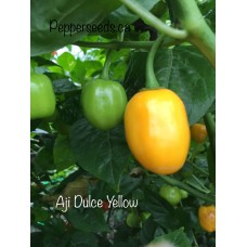 Aji Dulce Yellow Pepper Seeds