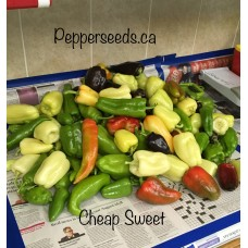 Cheap Sweet Annuum Pepper Seeds