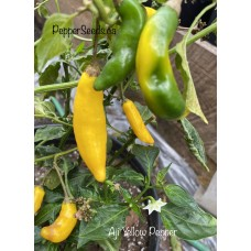 Aji Yellow Pepper Seeds