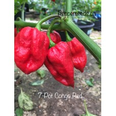 7-Pot Congo Red Pepper