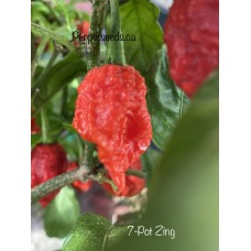 7-Pot Zing Pepper Seeds