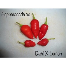 Datil X Limon Red Pepper Seeds