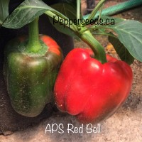 Sweet Red Bell Pepper Seeds