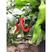 Maules Red Hot Cayenne