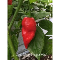 Jays Ghost Pepper Red
