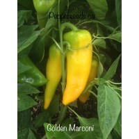 Golden Marconi Pepper Seeds