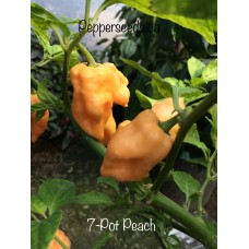 7-Pot Peach Pepper