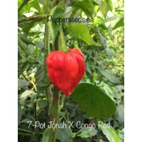 7-Pot Jonah X Congo Red Pepper